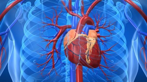 Leaflet untuk informasi pasien penyakit jantung Koroner
